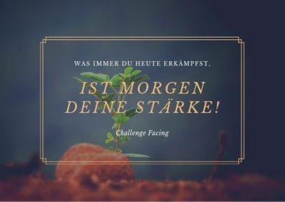 Silke Dumancic Challenge Facing